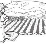 Agricultor: Buena suerte o mala suerte