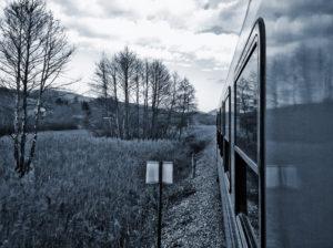 Tomar el tren