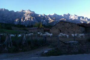 Recordando mi paso por Cantabria