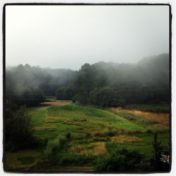Riveira nublada - Instagram