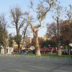 Parque en Istanbul